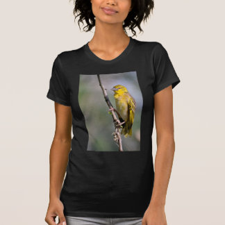 Village Weaver on branch T Shirts