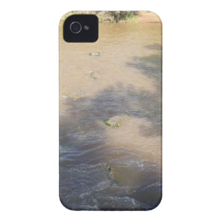 Villanueva State Park iPhone 4 Case-Mate Cases