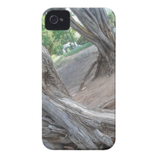 Villanueva State Park iPhone 4 Covers