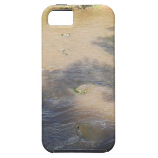Villanueva State Park iPhone 5 Cases