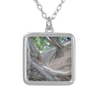 Villanueva State Park Silver Plated Necklace