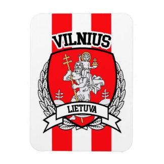 Vilnius Magnet