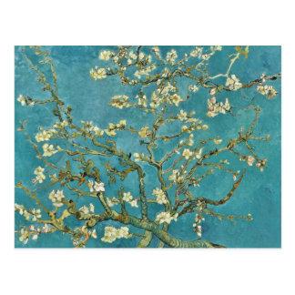 Vincent van Gogh Almond Blossom GalleryHD Postcard