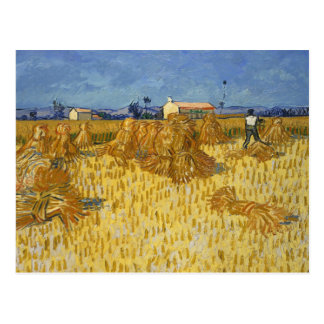 Vincent van Gogh - Corn Harvest in Provence Postcard