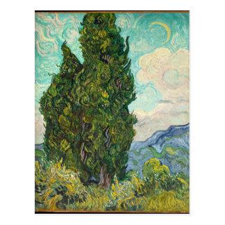 Vincent Van Gogh Cypresses Postcard