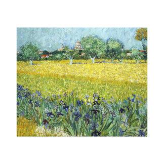 Vincent van Gogh Field of Flowers near Arles Canvas Print