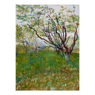 Vincent van Gogh Flowering Orchard Poster