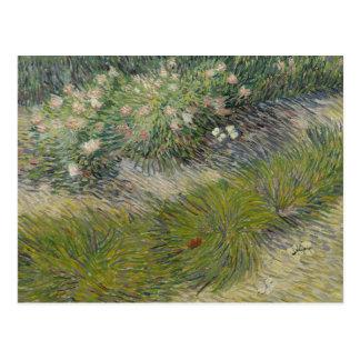 Vincent van Gogh - Grass and Butterflies Postcard