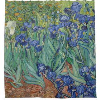 Vincent van Gogh Irises GalleryHD Fine Art