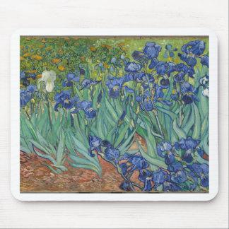Vincent Van Gogh Irises Painting Flowers Art Work Mouse Pad