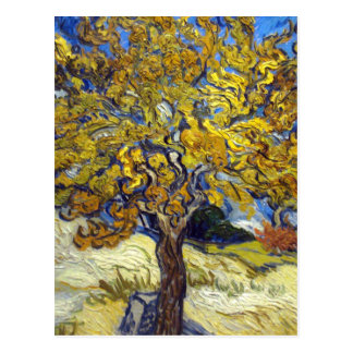 Vincent Van Gogh Mulberry Tree Postcard