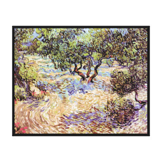 Vincent Van Gogh - Olive Orchard Fine Art Canvas Print