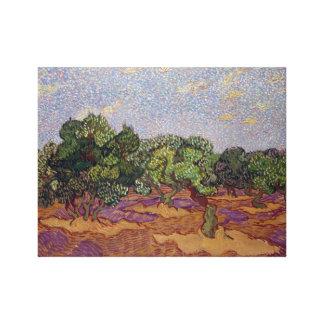 Vincent van Gogh Olive Trees Canvas Print