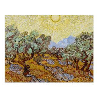 Vincent van Gogh - Olive Trees Postcard