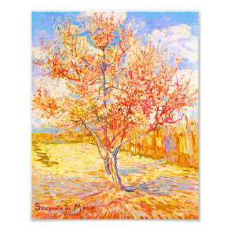 Vincent Van Gogh Peach Tree in Blossom Vintage Art Photograph