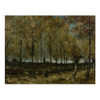 Vincent van Gogh - Poplars near Nuenen Postcard