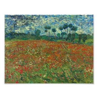 Vincent van Gogh - Poppy Field Art Photo