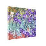 Vincent Van Gogh Purple Irises Fine Art Gallery Wrapped Canvas