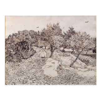 Vincent van Gogh | The Olive Trees Postcard