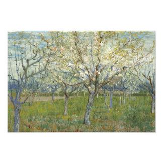 Vincent van Gogh - The Pink Orchard Photo Print