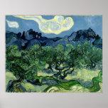 Vincent van Gogh's Olive Trees (1889) Posters