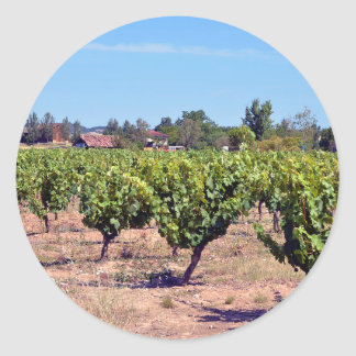 Vine in the Gaillac region in France Classic Round Sticker