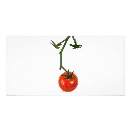 Vine tomato photo card