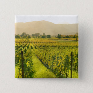 Vineyard in Autumn in Napa Valley California 2 Inch Square Button