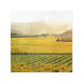 Vineyard in Autumn in Napa Valley California Canvas Print
