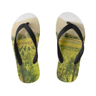 Vineyard in Autumn in Napa Valley California Kid's Flip Flops