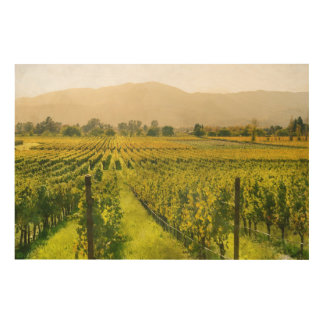 Vineyard in Autumn in Napa Valley California Wood Canvases