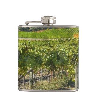Vineyard in Napa Valley California Flask