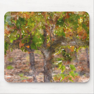 Vineyard in Napa Valley during Fall Mouse Pad