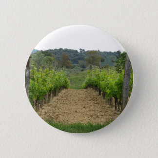 Vineyard in spring . Tuscany, Italy 2 Inch Round Button