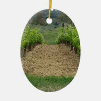 Vineyard in spring . Tuscany, Italy Ceramic Oval Ornament