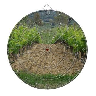 Vineyard in spring . Tuscany, Italy Dartboard
