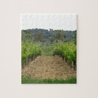 Vineyard in spring . Tuscany, Italy Jigsaw Puzzle