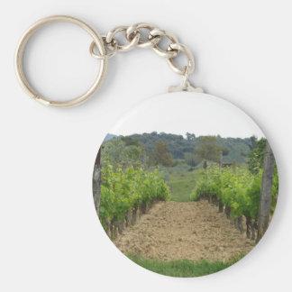 Vineyard in spring . Tuscany, Italy Keychain