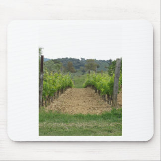 Vineyard in spring . Tuscany, Italy Mouse Pad