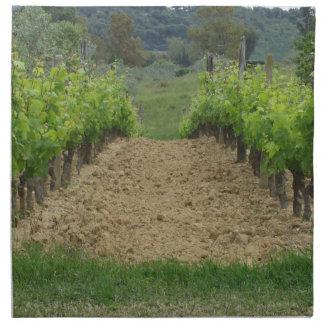 Vineyard in spring . Tuscany, Italy Napkin