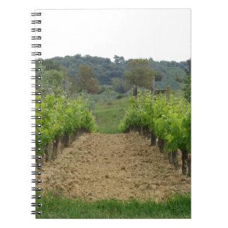 Vineyard in spring . Tuscany, Italy Notebooks