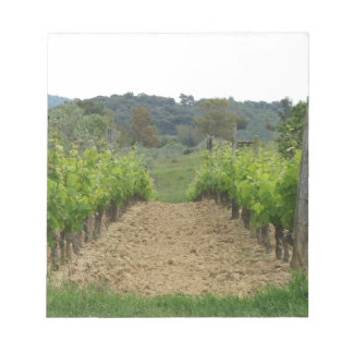 Vineyard in spring . Tuscany, Italy Notepad