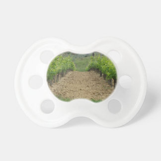 Vineyard in spring . Tuscany, Italy Pacifier