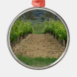 Vineyard in spring . Tuscany, Italy Silver-Colored Round Ornament