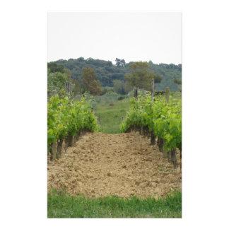 Vineyard in spring . Tuscany, Italy Stationery