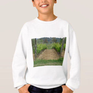 Vineyard in spring . Tuscany, Italy Sweatshirt