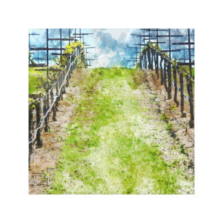 Vineyard in the Spring Canvas Print