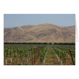 Vineyard Notecard