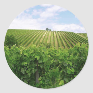 Vineyard - Vignoble Classic Round Sticker