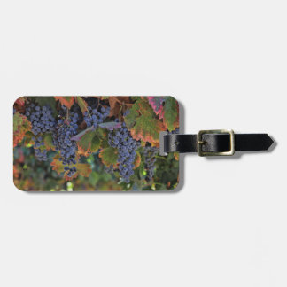 Vineyard Wine Grapes Luggage Tag Customizable